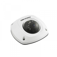 DS-2CD2542FWD-IS-2.8MM HIKVision